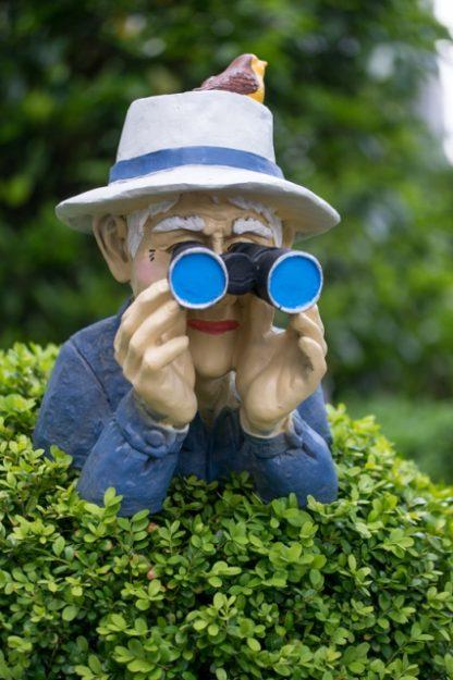 Der Beobachter